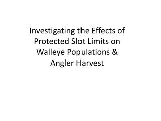Investigating the Effects of Protected Slot Limits on Walleye Populations & Angler Harvest