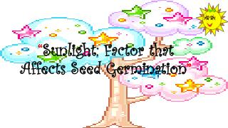 """ Sunlight: Factor that Affects Seed Germination """