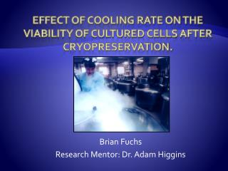Effect of Cooling Rate on the Viability of Cultured Cells After Cryopreservation.