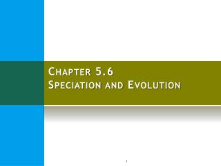 Chapter 5.6 Speciation and Evolution