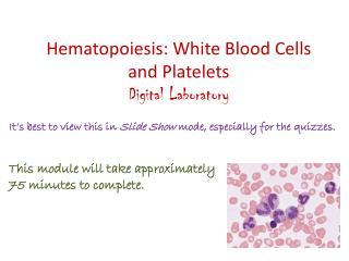 Hematopoiesis: White Blood Cells and Platelets Digital Laboratory