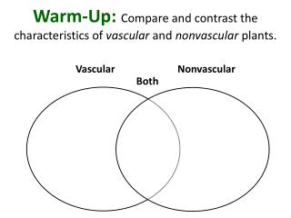 Warm-Up:  Compare and contrast the characteristics of  vascular  and  nonvascular  plants.
