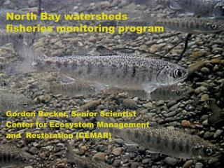 North Bay watersheds fisheries monitoring program