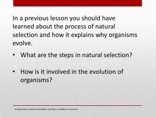 What are the steps in natural selection? H ow is it involved in the evolution of organisms?