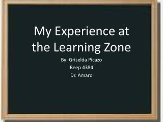 My Experience at the  Learning Zone  By: Griselda  Picazo Beep 4384 Dr.  Amaro