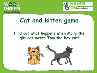 Cat and kitten game F ind out what happens when Molly the girl cat meets Tom the boy cat!