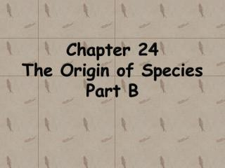 Chapter 24 The Origin of  Species Part B