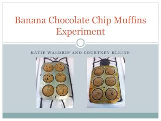 Banana Chocolate Chip Muffins Experiment