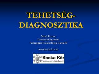 TEHETS G-DIAGNOSZTIKA