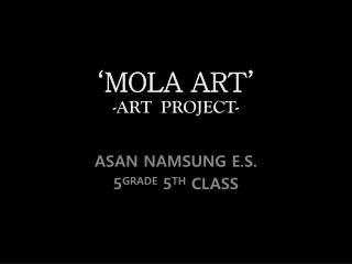 'MOLA ART' - ART PROJECT-