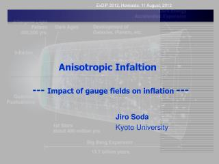 Anisotropic  Infaltion ---  Impact of gauge fields on inflation  ---