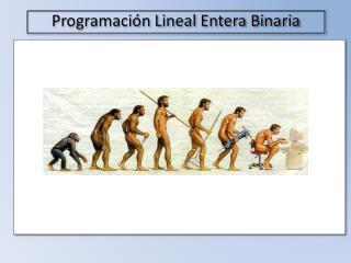 Programaci�n Lineal  Entera Binaria