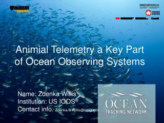 Animial  Telemetry a Key Part of Ocean Observing Systems