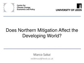 Does Northern Mitigation Affect the Developing World?
