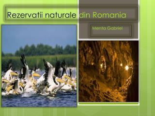 Rezervatii naturale din Romania