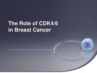 The Role of CDK4/6  in Breast Cancer