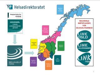Nasjonal plan for selvhjelp