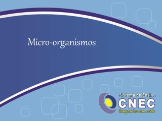 Micro-organismos