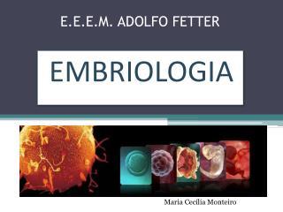 E.E.E.M.  ADOLFO FETTER