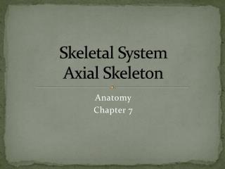 Skeletal System Axial Skeleton