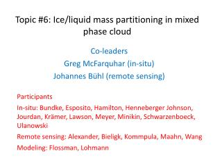 Topic #6: Ice/liquid mass partitioning in mixed phase cloud