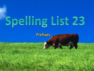 Spelling List 23