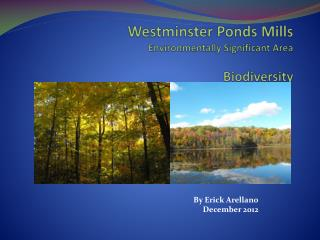 Westminster Ponds Mills  Environmentally Significant Area Biodiversity