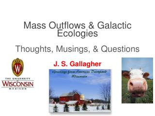 Mass Outflows & Galactic Ecologies Thoughts, Musings, & Questions