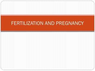 FERTILIZATION AND PREGNANCY