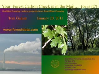 Your  Forest Carbon Check is in the Mail   or is it