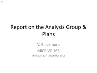 Report on the Analysis Group & Plans