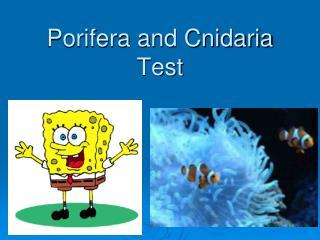 Porifera and Cnidaria Test