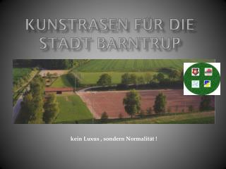 Kunstrasen für die  Stadt Barntrup
