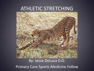 ATHLETIC STRETCHING