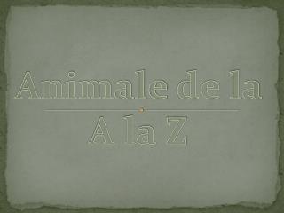 Animale  de la A la Z