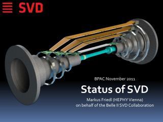 Status  of  SVD