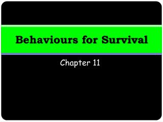 Behaviours for Survival