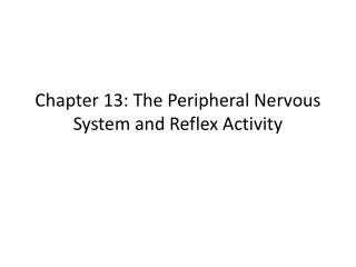 Chapter 13: The Peripheral Nervous System and Reflex Activity