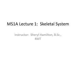 MS1A Lecture 1:  Skeletal System