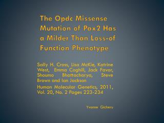 The Opdc Missense Mutation of Pax2 Has a Milder Than Loss-of Function Phenotype
