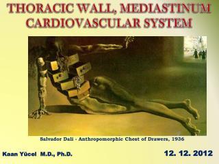 Kaan Y�cel  M.D., Ph.D.