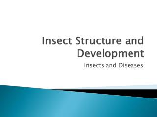 Insect Structure and Development