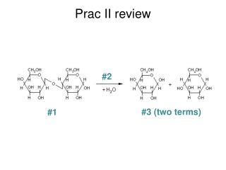 Prac II review