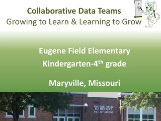 Collaborative Data Teams Growing to Learn & Learning to Grow