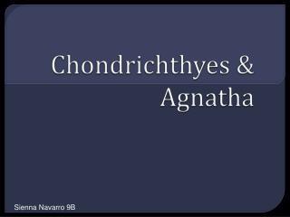 Chondrichthyes  &  Agnatha