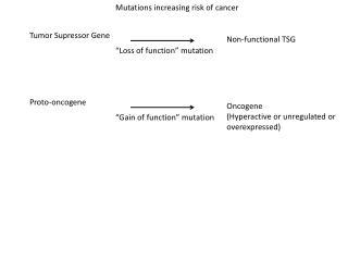 Tumor  Supressor Gene