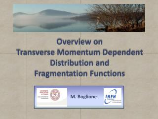 Overview on  Transverse Momentum Dependent  Distribution and  Fragmentation  F unctions