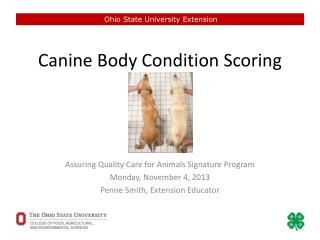 Canine Body Condition Scoring