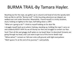 BURMA TRAIL-By Tamara Hayler.