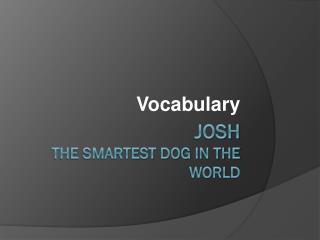 Josh  The Smartest Dog in the World